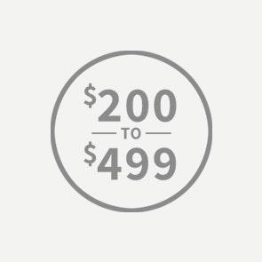 Jewelry $200 to $499