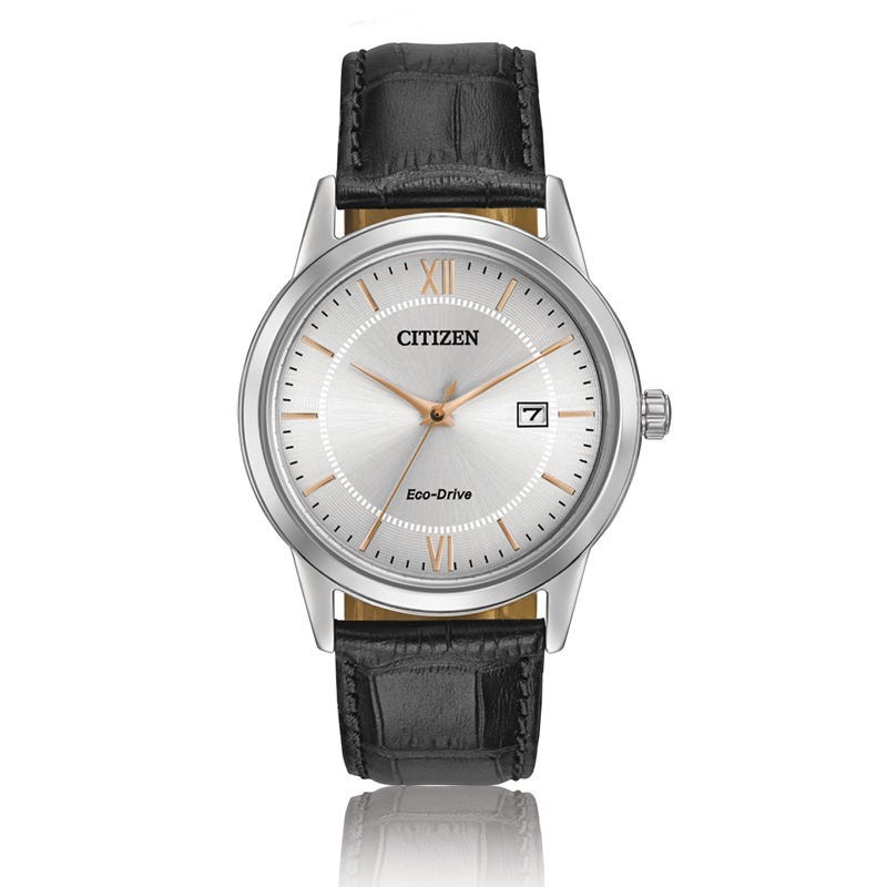 CITIZEN Eco-Drive Men's Straps Collection Watch