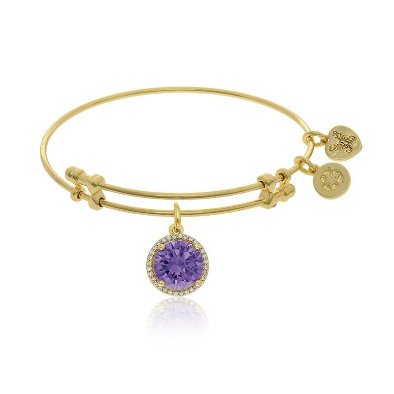 February Birthstone Crystal Charm Bangle Bracelet in Yellow Brass