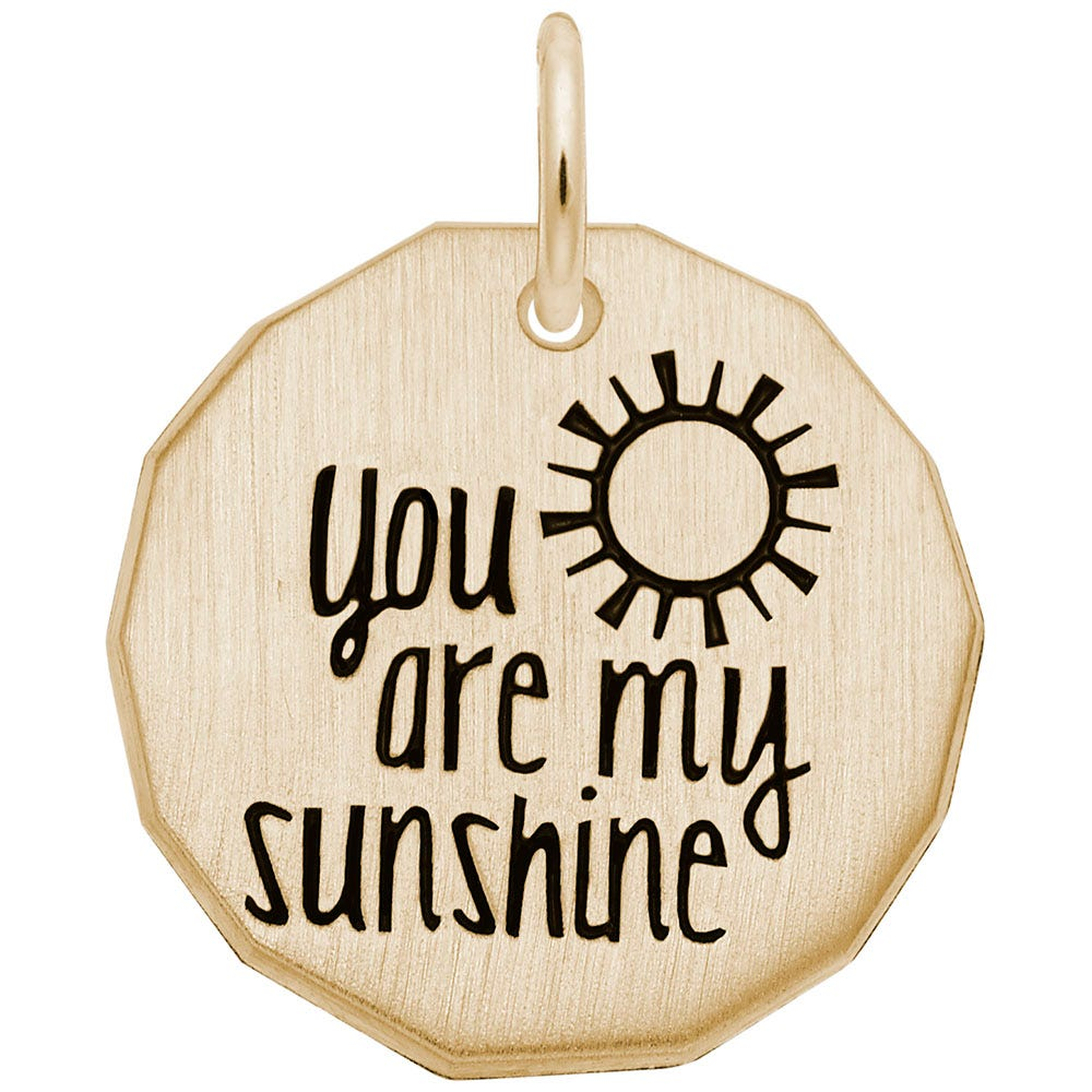 You Are My Sunshine Charm in 14K Yellow Gold