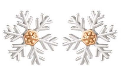 Frozen Snowflake Earrings